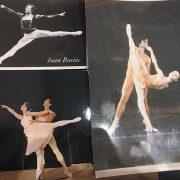 Joan Bosioc - Danza classica professionisti